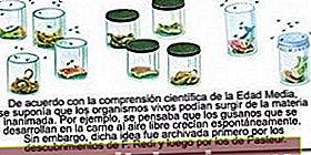 Definiția Biogenesis