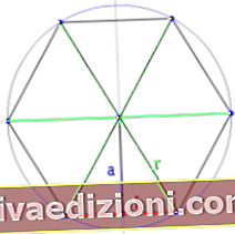 Definiția Polygon