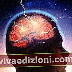 Definiția Consciousness