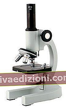 Definiția Microscope