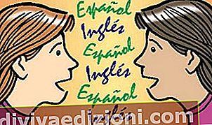 Definiția Bilingualism