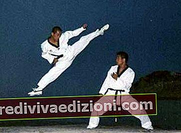 Definiția martial arts