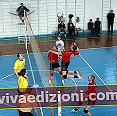 Definiția Volleyball