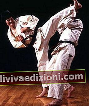 Definiția Karate