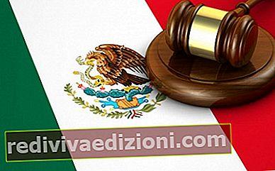멕시코 규정 (NOM 및 NMX 표준)-정의, 개념 및 정의