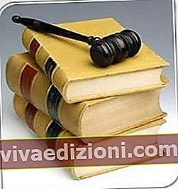 법령의 정의
