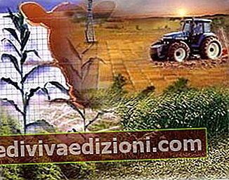 農業生産の定義