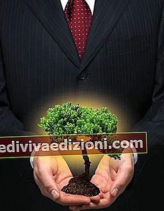 Definiția Sustainability