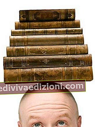 Definiția literaturii