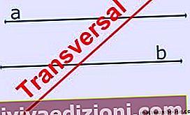 Definiția Transversal