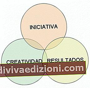 Definiția Initiative