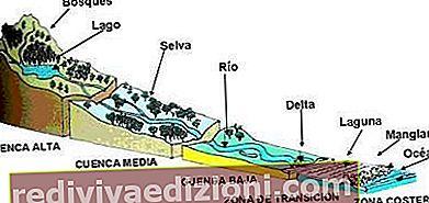 Definisi Cuenca