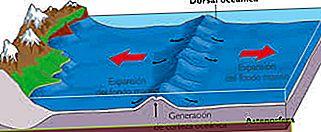 Definisi Ocean Ridge