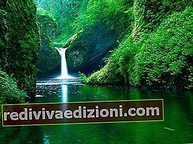 Definiția Natural Landscape