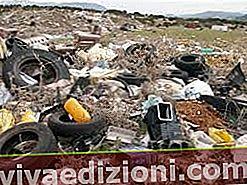 Definiția Waste