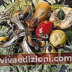 Definiția deșeurilor organice