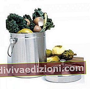 Definiția Organic Trash