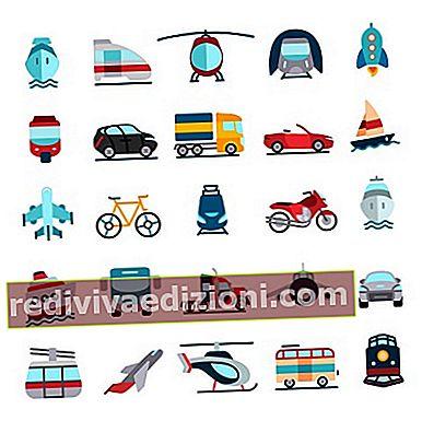 Definiția Vehicle