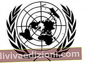 Definiția ONU