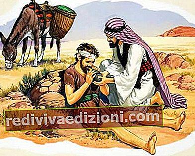 Definiția Samaritan